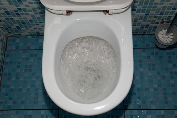 О том, куда утекает вода из раковины или унитаза, большинство пользователей современной системы канализации не задумываются