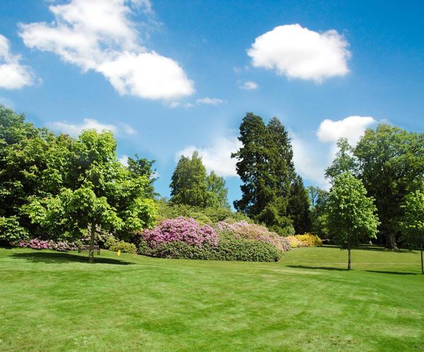 Парк в пейзажном стиле