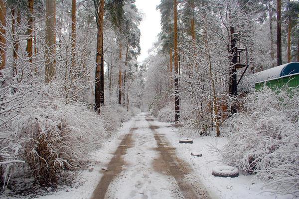 Первый снег на дороге к дачному посёлку