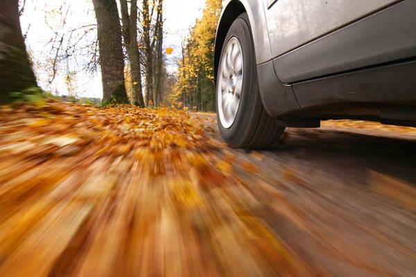 Опавшая листва может быть опасной для водителя