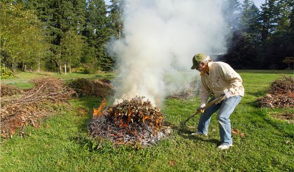 Листья сжигаются...