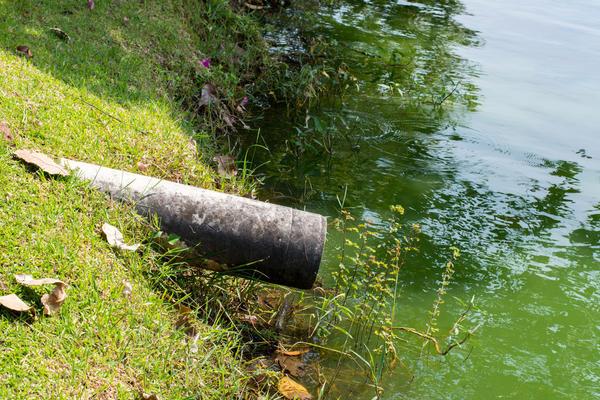Труба дренажной системы, направляющая сток в естественный водоём