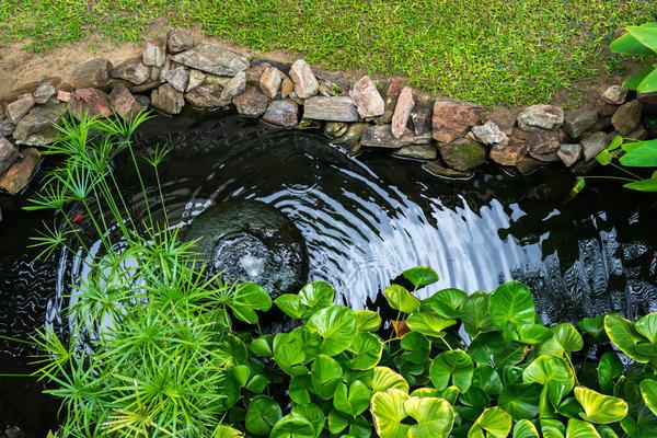 Дренажная канава в виде ручья