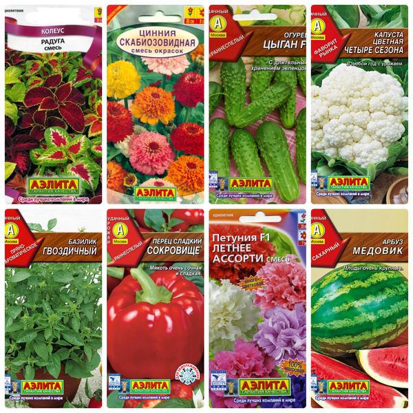 Оставьте свой отзыв о семенах этого производителя! Для коллажа использованы фото с сайта http://www.ailita.kz/