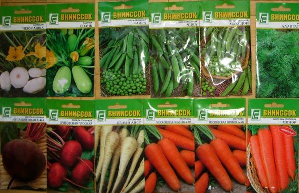 Оставьте свой отзыв о семенах этого производителя! Фото с сайта http://galkriv.livejournal.com/79744.html