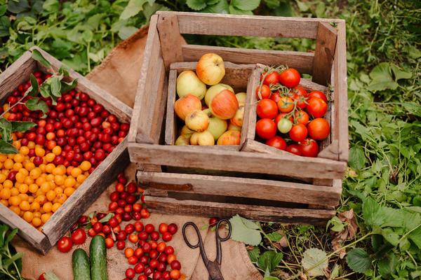 Локаворство не что иное, как употребление в пищу местных продуктов, выращенных недалеко