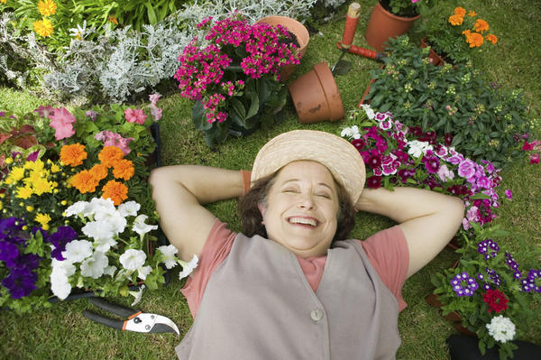 Надо ещё вырастить цветы, услышать пение птиц, да и просто позагорать и отдохнуть на своих сотках.