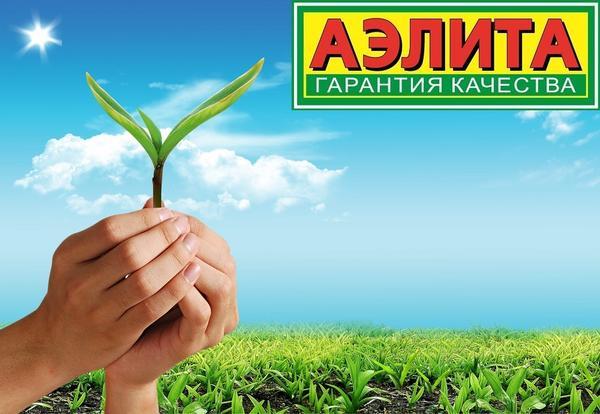 Отзыв о посадочном материале производителя Аэлита