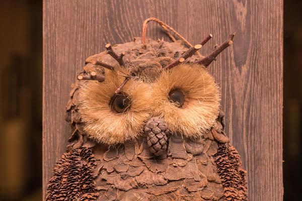 Из природных материалов получаются замечательные совы