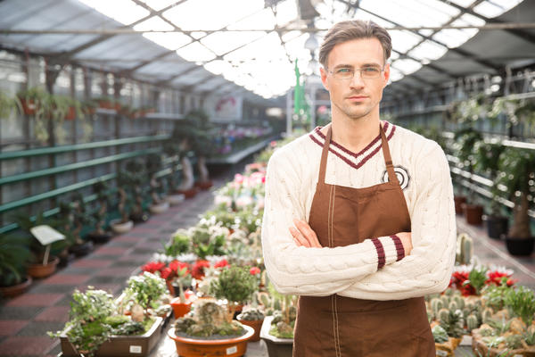Подбор растений для зимнего сада не так уж прост