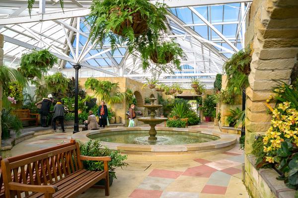 Консерватория в Тасманском королевском ботаническом саду. Автор mastapiece / Shutterstock, Inc.