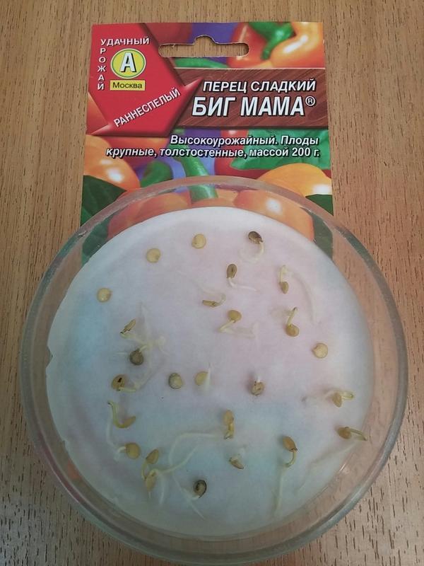 Перец сладкий Биг Мама