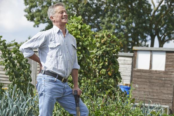 Возьмите за правило начинать свой день в саду с разминки, тогда проблем со спиной будет гораздо меньше