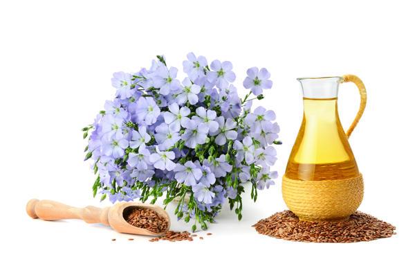 Целебными свойствами обладают как семена льна, так и льняное масло