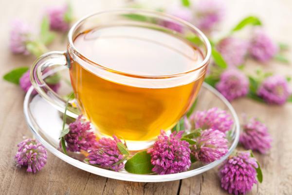 Чай из клевера особенно полезен женщинам