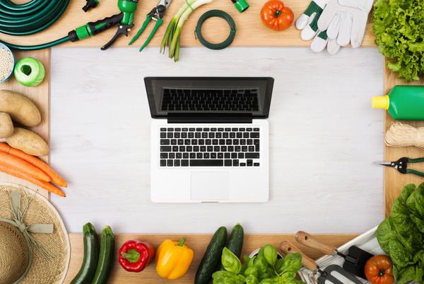 Правила тестирования интернет-магазина 7 семян