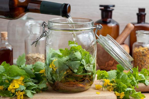На лекарственных травах можно делать настойки для наружного применения
