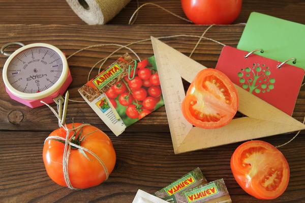Поздравляем победителей проекта Народное тестирование семян овощей от АЭЛИТЫ