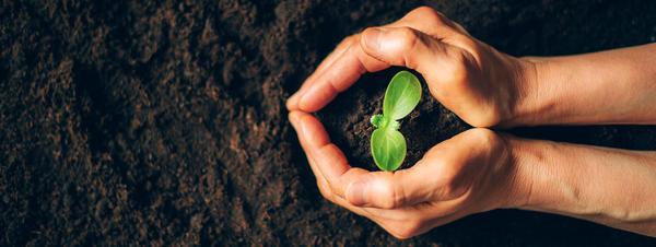 Органическое земледелие. С любовью к земле и всему, что на ней растет