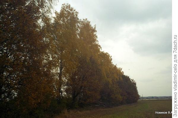 Осенняя пора - очей очарованье...
