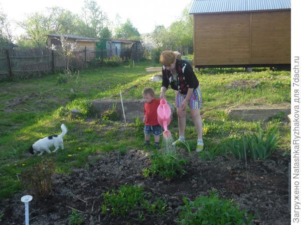 Ярослав с бабушкой поливает цветник