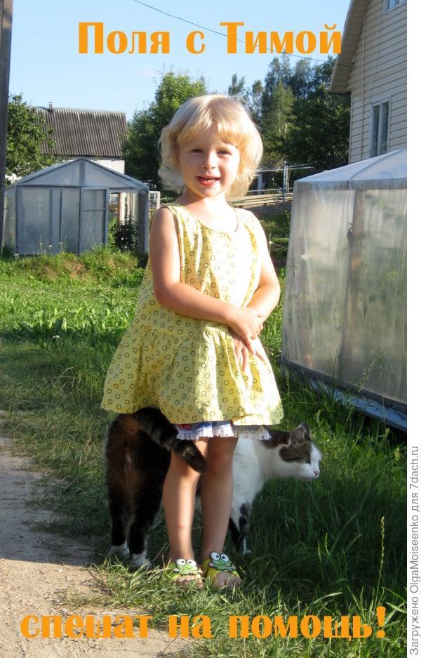 девочка Поля и кот Тима