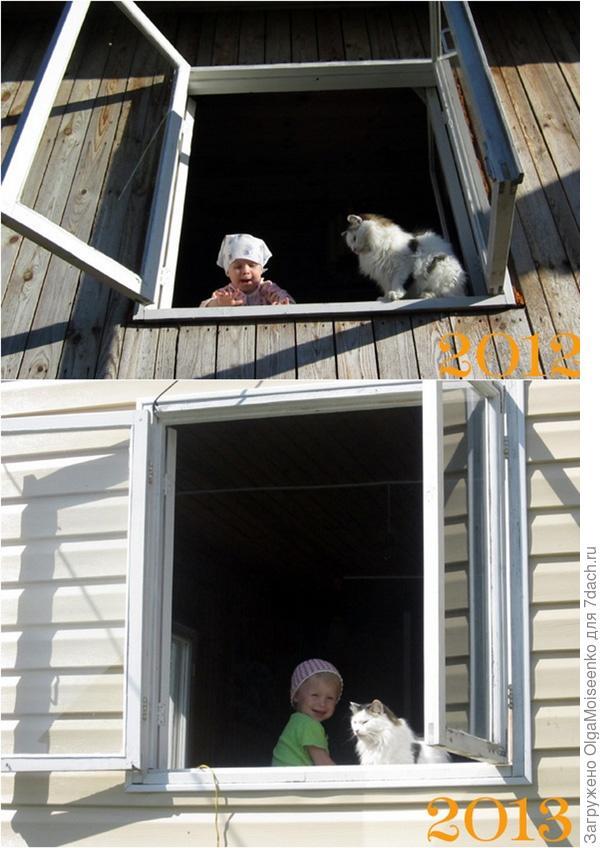 ребенок и кот на открытом окне