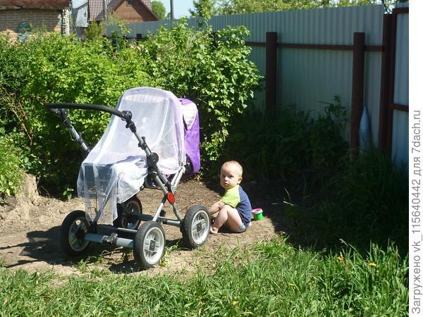 Стёпа и коляска