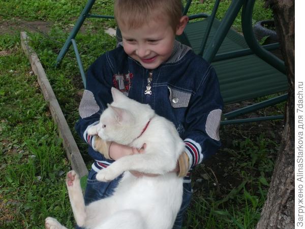 Наш малыш отдыхает с котиком)