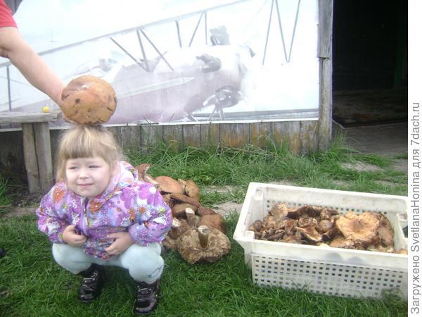 Ксения и белый гриб.