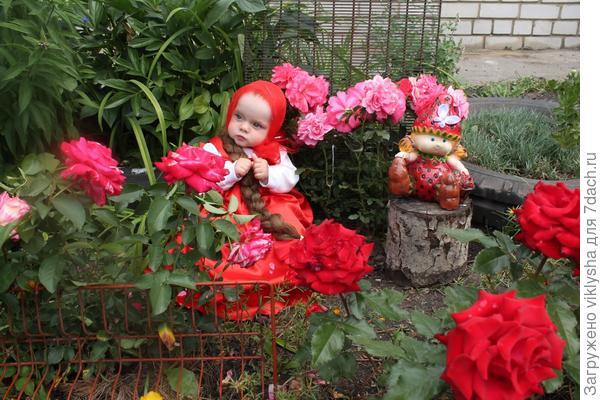Девочка среди роз