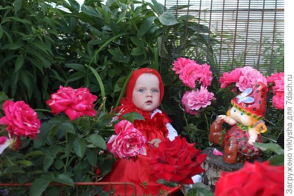 Виктория в розах