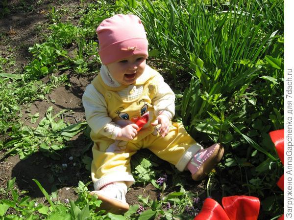 ребенок оторвал листочек от тюльпана
