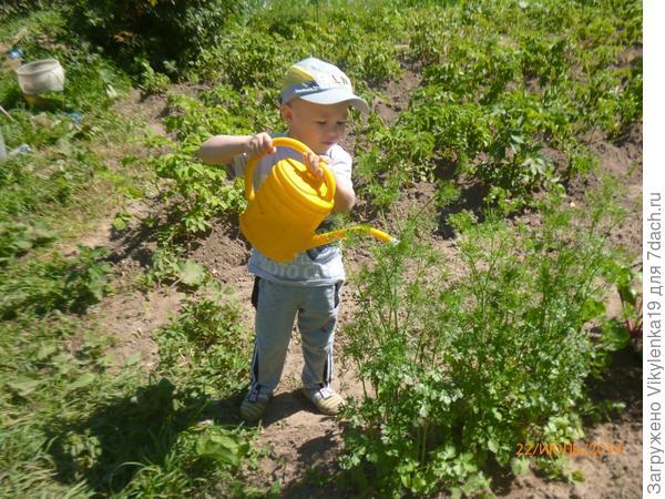 Дима поливает огород