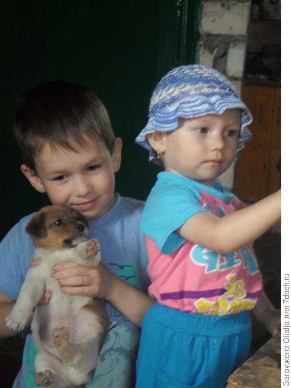 дети и звери