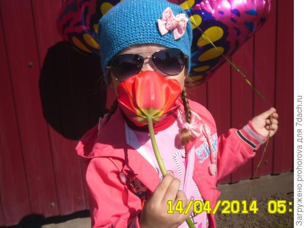 Дашенька с тюльпаном
