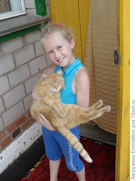 С котом Рыжиком