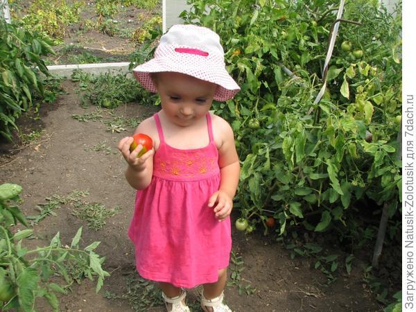 Настенька готовится съесть вкусненькую помидорку