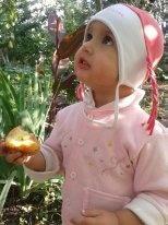 Вкусные яблочки