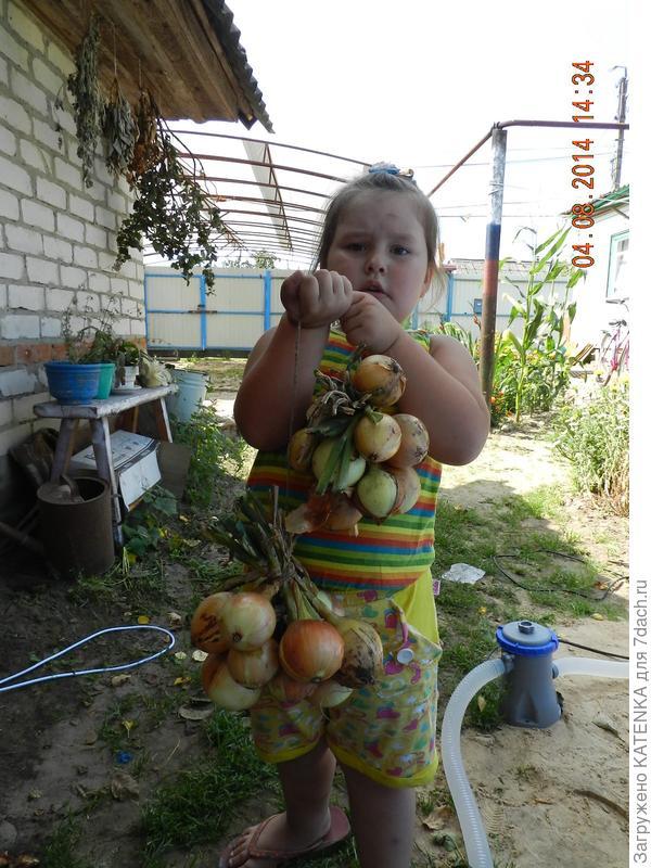 Аленка помогает маме со сбором урожая!