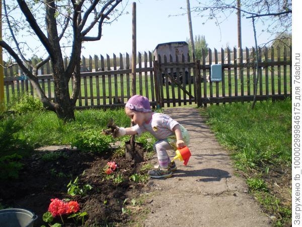Посажу цветы для мамы, Буду поливать их я,  А когда начнут цвести,  Будет рада вся семья!  Дочка очень любит помогать, даже еще в таком юном возрасте она уже главная наша помощница. Всю работу выполняет со старанием и удовольствием.