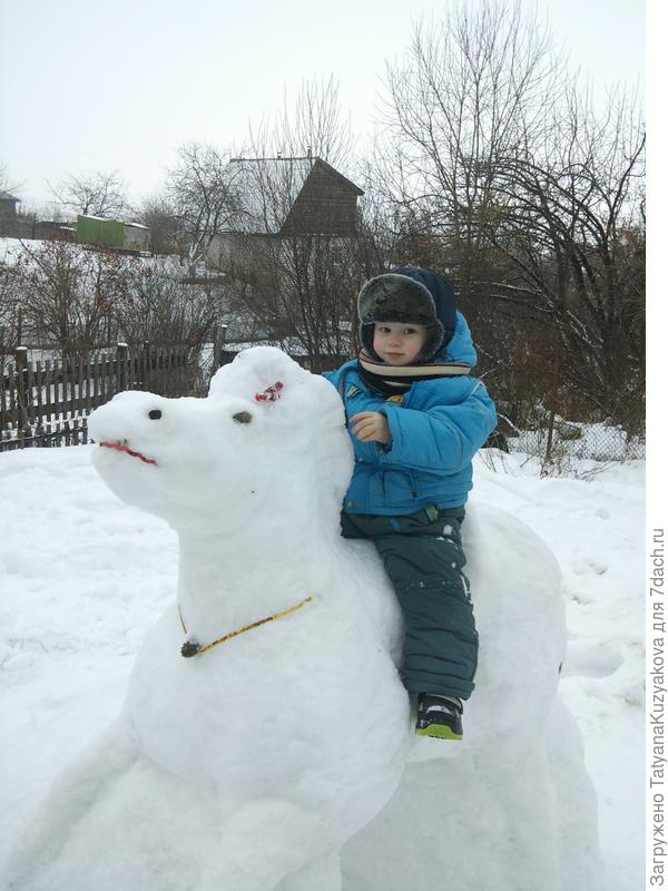 зимой на даче встречали Новый Год на лошадке