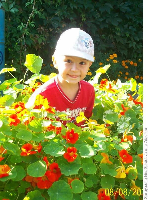 Мальчишка цветочной красоты