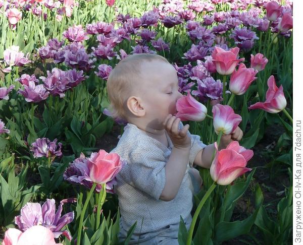 Мой внук Костя.