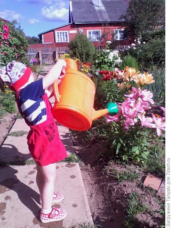 Алёнушка поливает цветочки