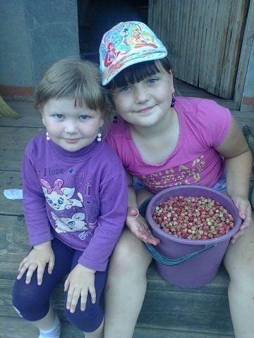 ягодки)