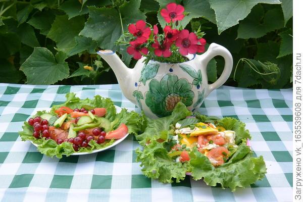 Яичница с помидорами и болгарским перцем. Пошаговый рецепт с фото