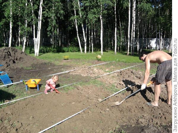 Поля с папой выравнивают землю под газон.