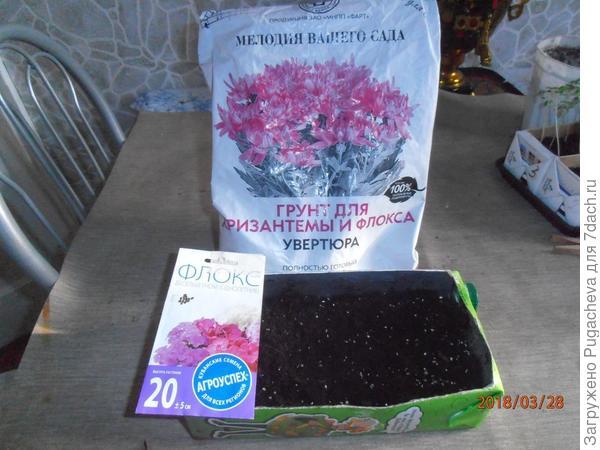 земля для флоксов,семена и коробка.