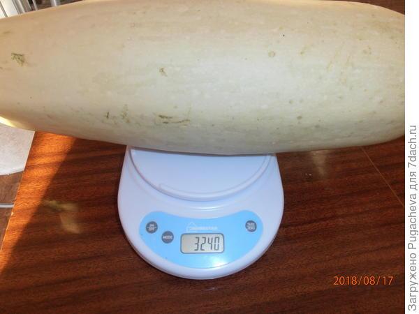 вес-3240 гр.